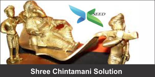 Shree Chintamani Solutions