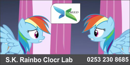 S K Rainbo Color Lab