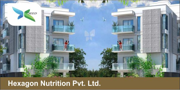 Hexagon Nutrition Pvt. Ltd.
