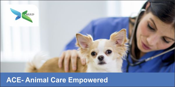 ACE- Animal Care Empowered